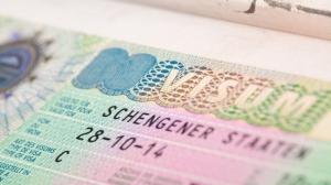 Önemli Duyuru: Almanya İçin Tır Sürücüsü Vize Başvuruları Yeniden Kabul Edilmeye Başlandı!