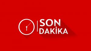 Macaristan ve Çekya Geçiş Belgeleri Genel Kullanıma Açıldı
