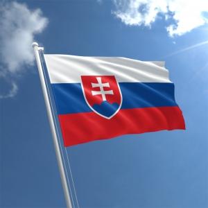 Slovakya 'da Covid-19 Önlemleri Kapsamında Sokağa Çıkma Yasağı