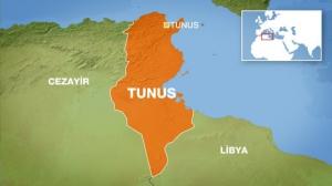 Tunus/Türk Lojistik Şirketlerine Yönelik Anket Çalışması