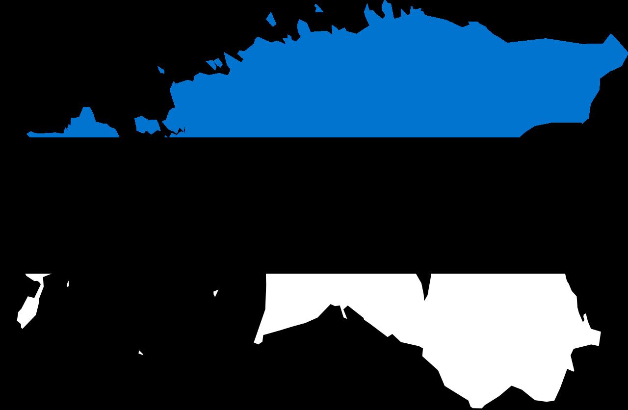 300 Adet Estonya İlave Tektip Geçiş Belgesi Temin Edildi