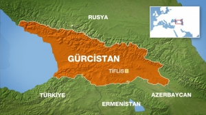 Gürcistan'a Yönelik Sevkiyatlar Hususunda